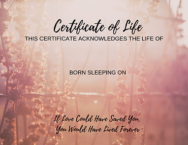 Cert of Life non-christian.png