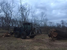 Arens Land Clearing Homestead