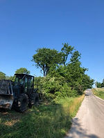 Arens Land Clearing Right of Way
