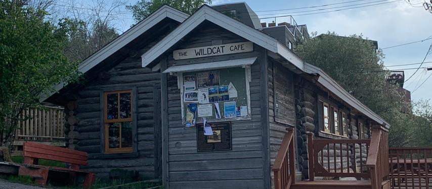 Le Wildcat café convoité par les artistes