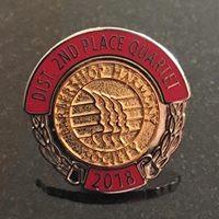 2nd place pin.jpg