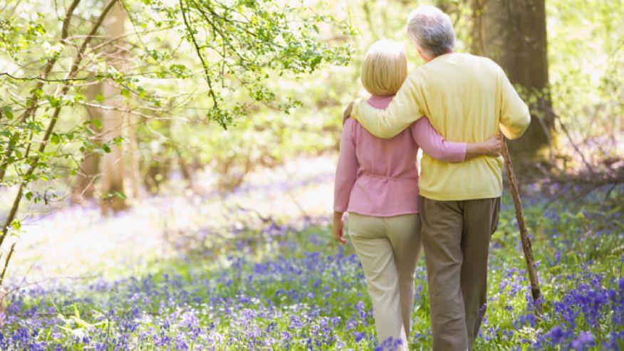 Senior Citizen Physical Activity Healthy Exercise