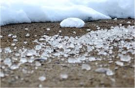 What are the effects of rock salt on your lawn ?