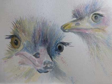 EBMad-Ostriches.jpg