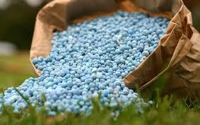 Fertilizer will help in the winter ??????