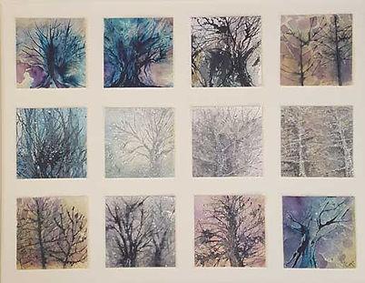 NKTrees.jpg