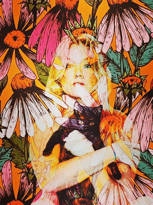 11X17 FLOWER KITTY SIGNED POSTER