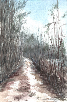 Around the Lake #2 - Sold