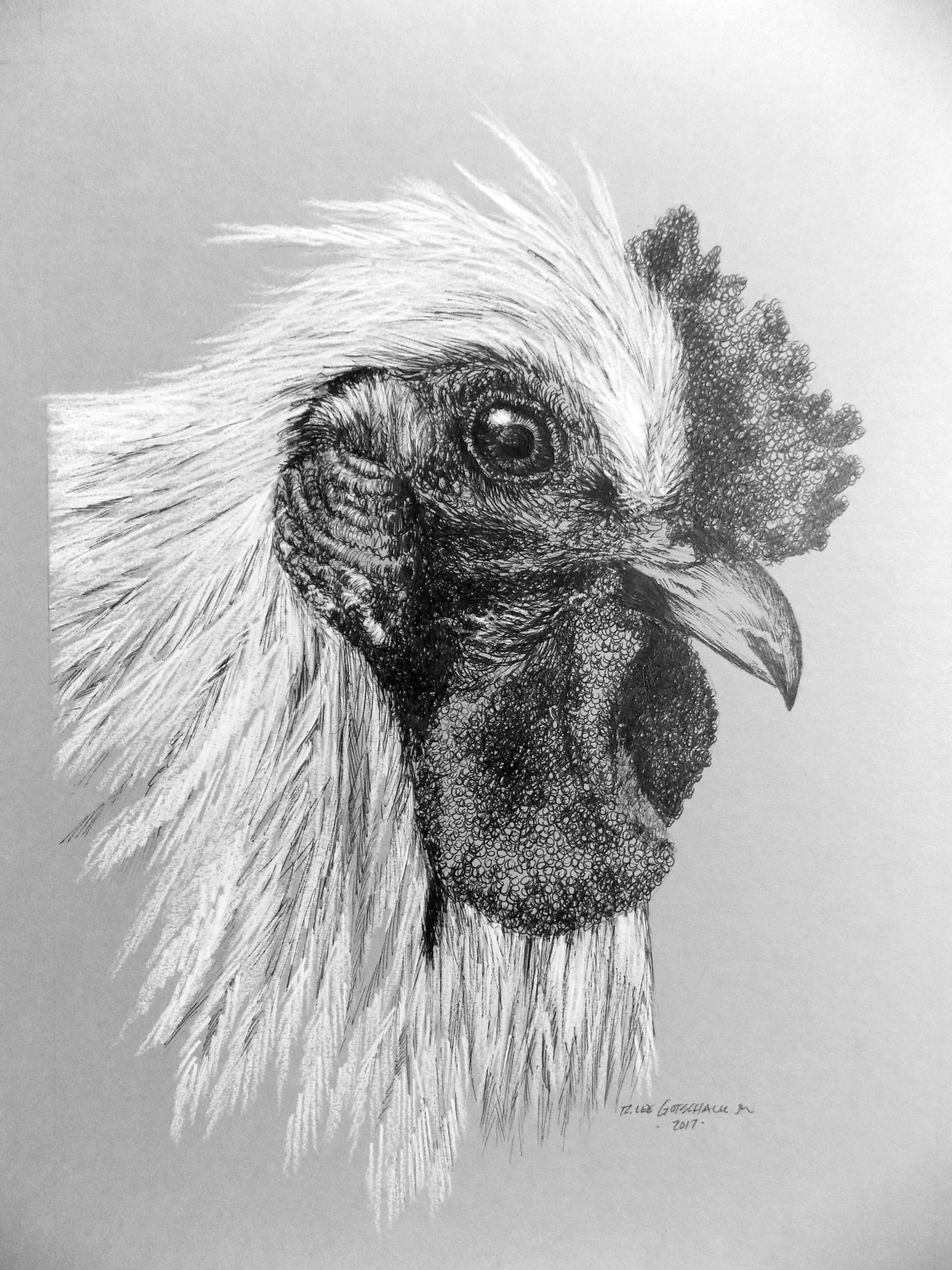 Chuck's Chicken