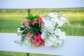 Visual Impressons - Weddings
