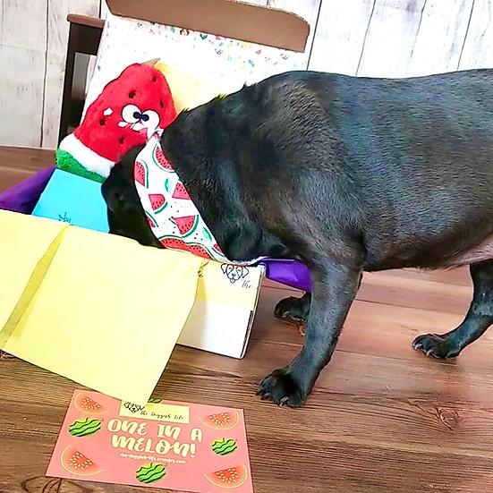 Deluxe Pup Box