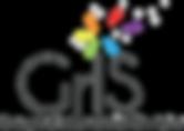 GrIS---Groupe-d'intervention-scolaire5.p