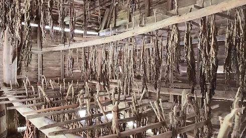maukmyu-asset-mezzanine-16x9-yc5ny2e.jpg
