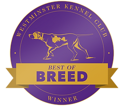 wkc-144-bestofbreed-button-v1.png