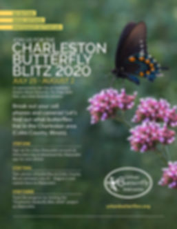 2020 Butterfly Blitz Flyer