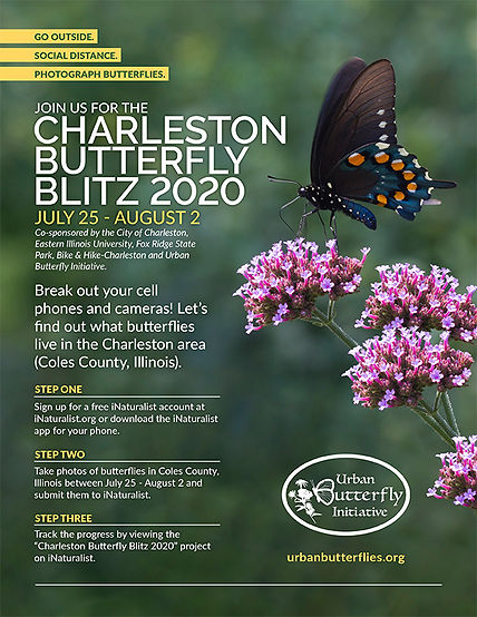2020 Butterfly Blitz Flyer.jpg