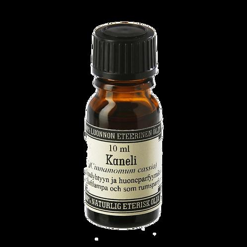 Cinnamon essential fragrance oil