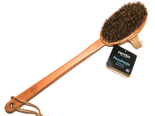 Body brush with removable handle