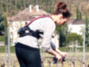 Atadora electrónica para vid Ingeniero de coulon, atando viñas, atando uvas