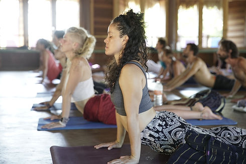 cobra pose, yoga practice, anahata chakra, heart energy centre, bhujangasana