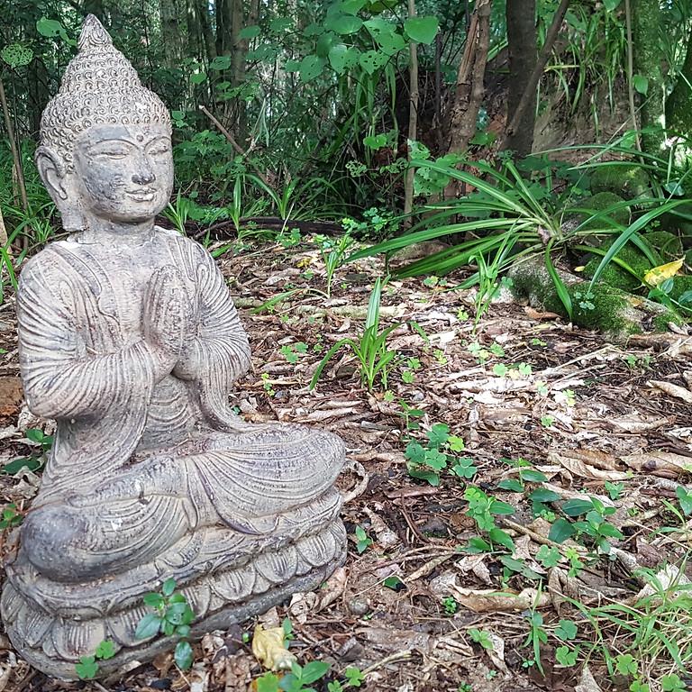7 Day Heart Awakening Silent Meditation retreat