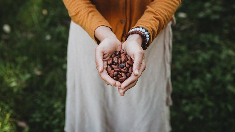 Cacao Facilitation Training