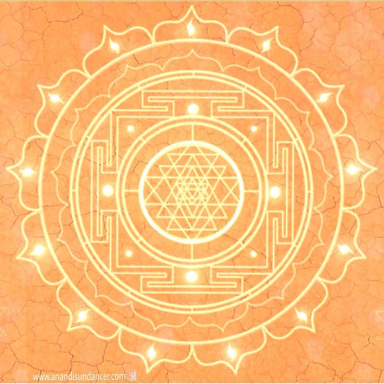 Meditative Hatha Yoga at The Yoga Space Hastings