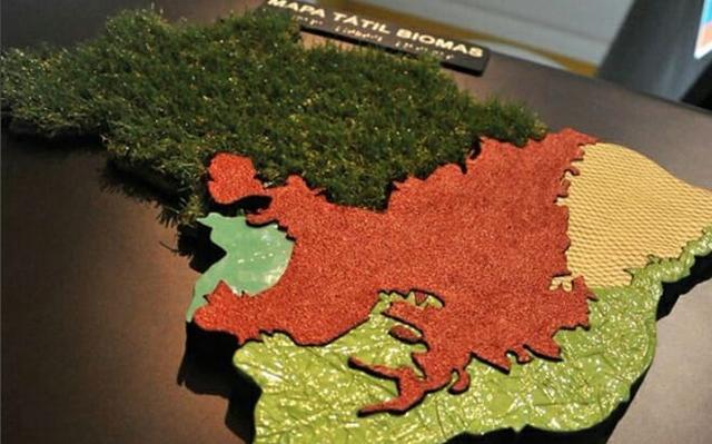 Mapa do Brasil montado com diferentes texturas que representam os biomas brasileiros