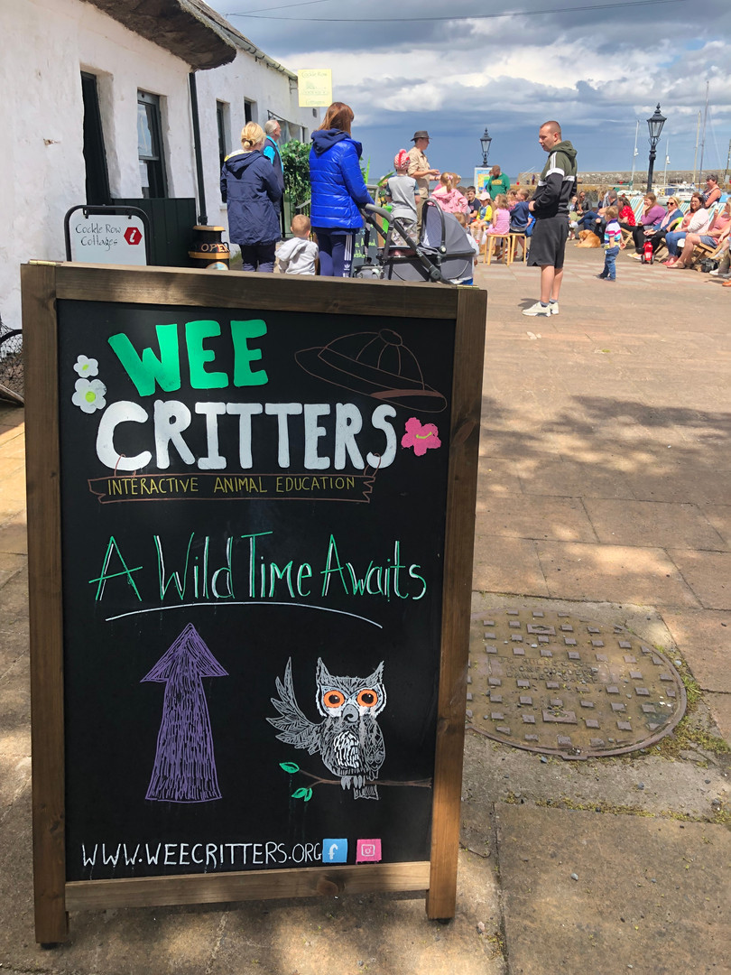 A wild time awaits at a Wee Critters event