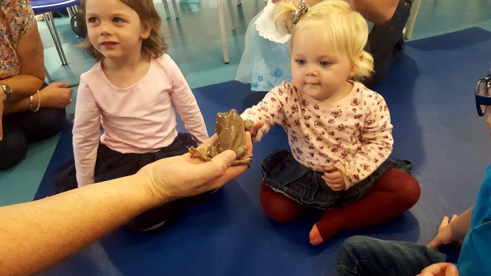 Pre-school child meets frog