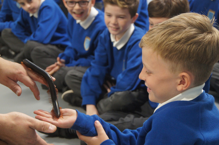 Primary School meeting Stampy the giant Millipede