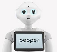 【Pepper】バストアップ.png