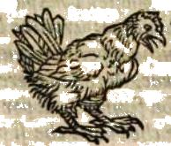 poule2.png