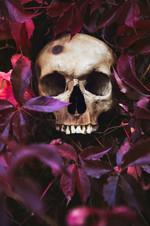 Fall Skull