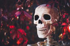 Autumn bones 2
