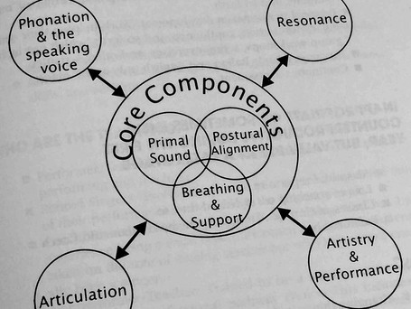 Core components of singing