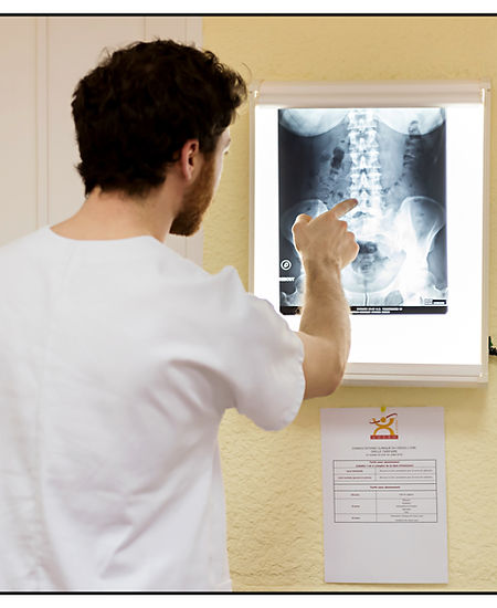 Cabinet osteopathie lyon 7
