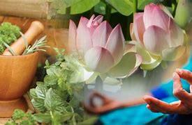 Seminar: Reviving the Art of Self-Nurturing
