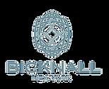 Bicknall