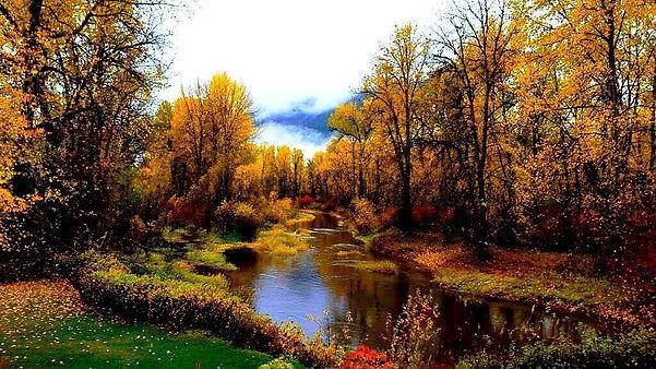 ROTR Fall Colors.jpg