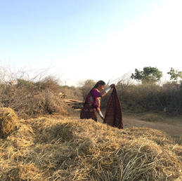 Researching and Documenting shifting gender roles within the Maldhari community, a pastoral nomadic community in India.