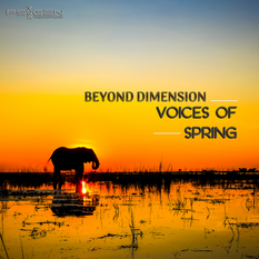 Beyond Dimension - Voices of Spring