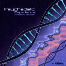 V.A. Psychedelic Experience - compiled by Mactronic