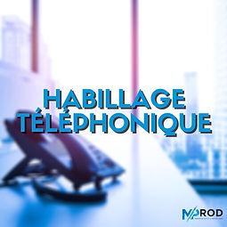 HABILLAGE TÉLÉPHONIQUE.jpg