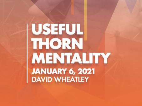 Useful Thorn Mentality