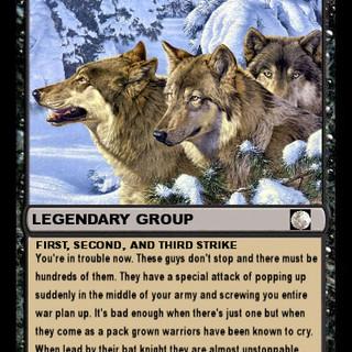 2nd legion card.jpg