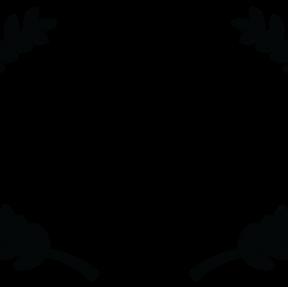 Tasveer South Asian Film Festival