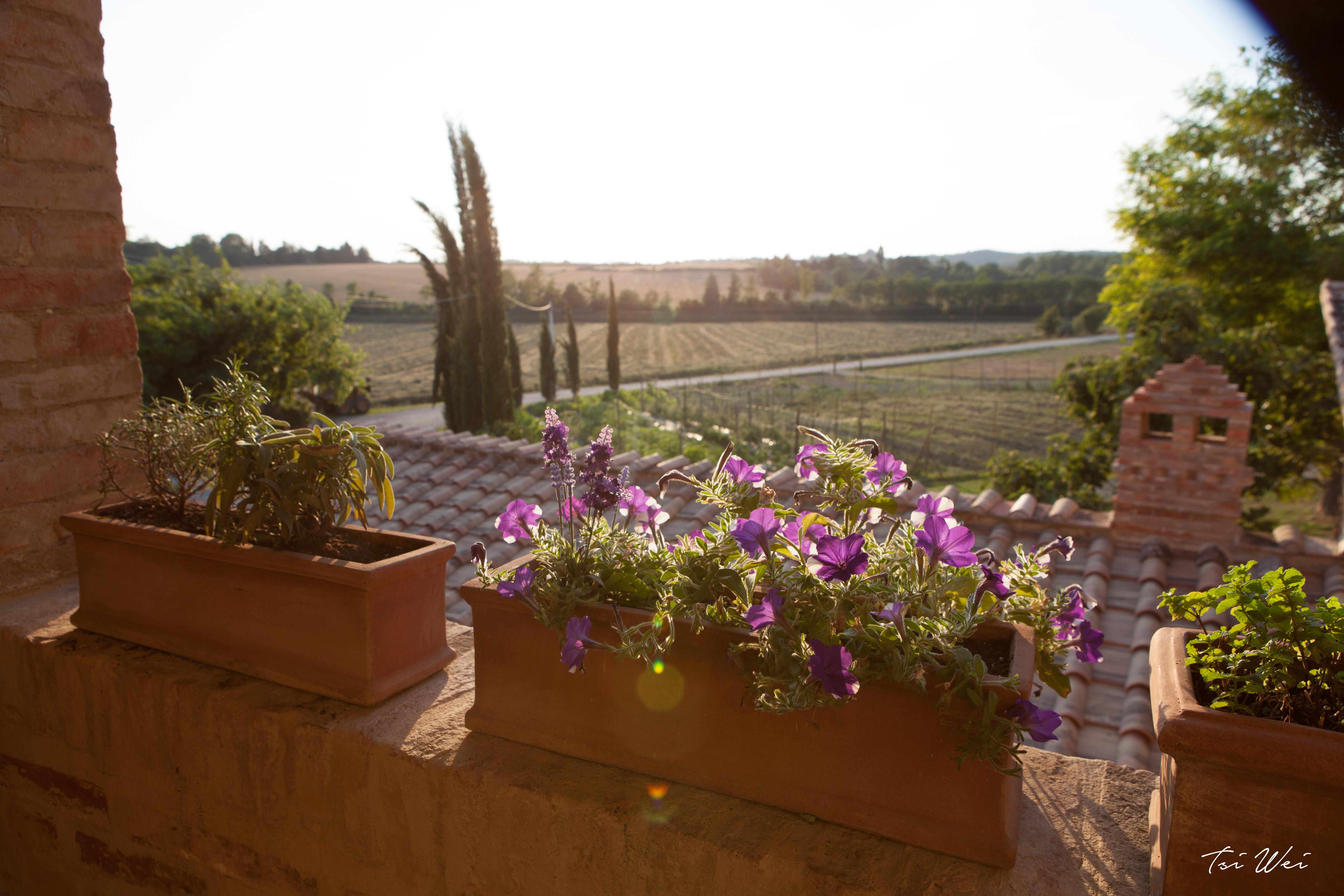 Nonna Ciana - Tuscany, Italy