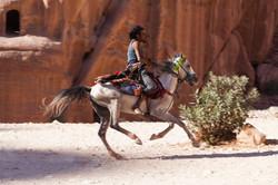 Horseman - Petra, Jordan