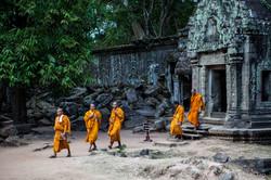 Monks - Cambodia
